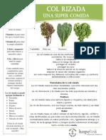 Kale Spanish Final