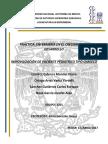 INMOVILIZACIÓN (CHALECO).docx