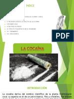 Expo - Cocaína, Pbc y Crack Resumido