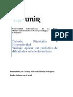 Trabajo 1. Test Predictivo de Dificultades en La Lectoescritura. Milena Calderón