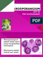 MIKROSPORANGIUM.pptx