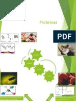 Aminoacidos Proteinas y Enzimas