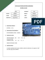 4. Protocolo Pruebas.docx