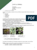 plantas12.20