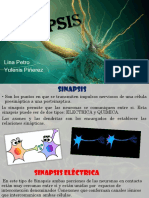 Sinapsis T.N.pptx