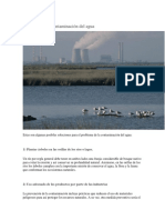 Soluciones a La Contaminación Del Agua