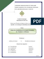 Ms.Gc.Abdellaoui+Delhem.pdf