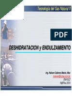 TGII_120_Introduccion Deshidratacion y Endulzamiento.pdf