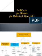 3_Topic 3 Cell Cycle