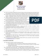 Reglamento PFE Temporada 2013