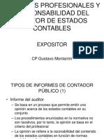 Responsabilidad Del Auditor de Estados Contables (2)