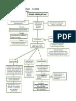 Capitulo 4 - Régimen Agrario Unificado (Mapa Conceptual)