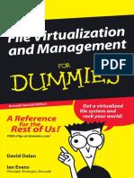 File Virtualization Management for Dummies BK 00