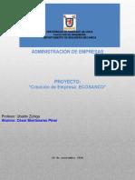 Proyecto_Administración_de Empresas_CMP_1.docx