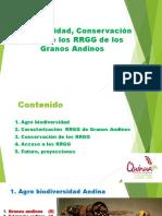 Bio Diversidad, Conservación y Uso de Los RRGG de Los Granos Andinos
