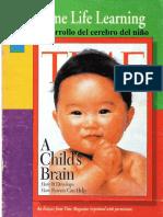 A Childs Brain
