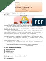 Prueba Diagnostico Lenguaje 3º