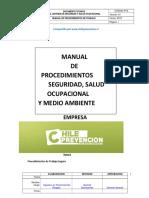 Procedimientos de Trabajo Seguro 2015 Doc