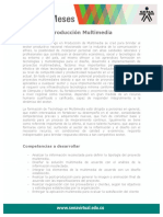 Produccion Multimedia