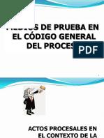 MEDIOS_DE_PRUEBA.pdf