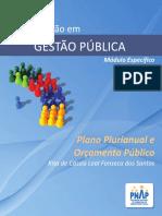 PNAP - GP - Plano Plurianual e Orcamento Publico.pdf