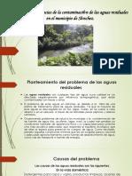 Causas y Consecuencias de La Contaminación de Las Aguas Residuales21