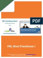 Manual pnl 1.pdf