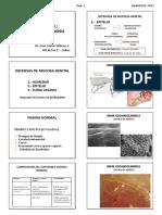 Gineco-2-Completo-USAMEDIC-2018-Alumno (4)