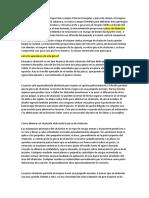 La Enfermera Quirúrgica Proporciona Campo Al Tercio Triangular y Pinza de Campo