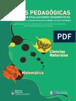 ETAPA DE DIAGNOSTICO DE CS NATURALES.pdf
