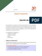 Apunte VIII Polinomios.pdf