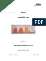 Protocolo_tecnico_Cinetica_.pdf