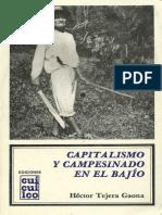 1982._Capitalismo_y_campesinado_en_el_Ba.pdf
