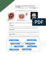 GuíaBiologíaHumana Parcial 1-2