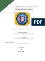 Irineo (Análisis de Las Fuentes Del Derecho Constitucional)
