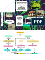 Grafica de Biologia