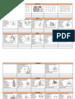 ejercicios de grupos grupos musculares