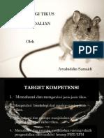 Pengendalian Tikus Aspphami Dki Jakarta (1)