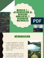guia_modulo_1_-_derecho_ambiental.pdf