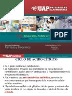 8. Bioquímica I