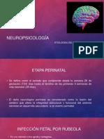 Neuro Psicologia