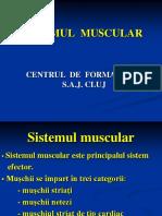 7 ..Sistemul Muscular
