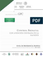 GRR. Control Prenatal.