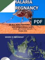 Malaria in Pregnancy (Oct Presentation)