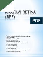 Anatomi Retina (Rpe)