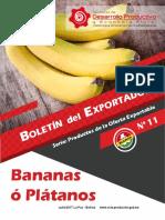 boletin-banano
