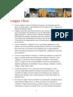 Língua Turca.pdf