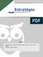 Proc. Trabalho - TRT 3 aula 11.pdf
