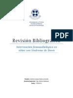 Rev. Bibliográfica, Intervención en Niños Con SD. (Vanesa Godoy L.)