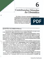Contribuições Da Cibernética (1)